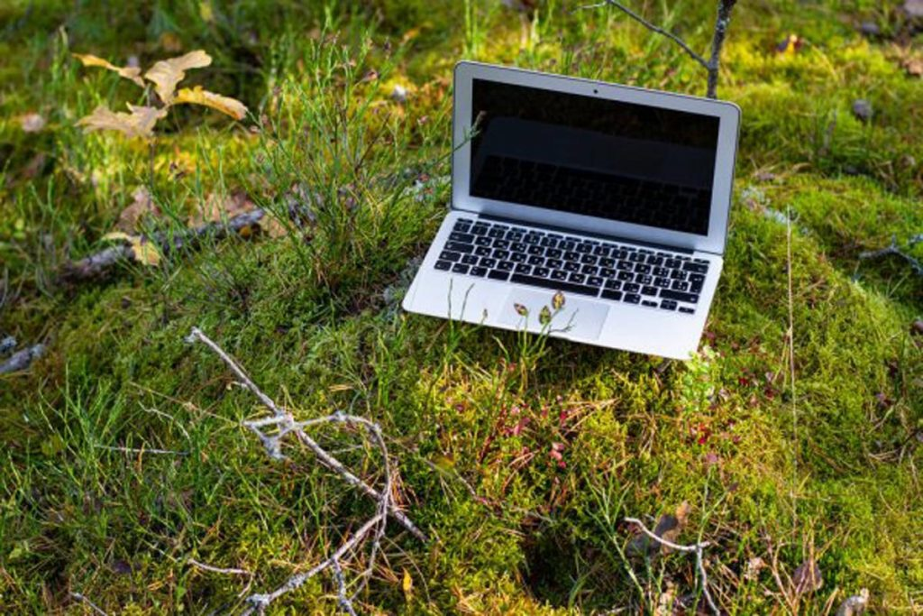 woods-internet